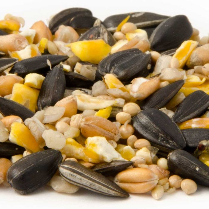Table Seed