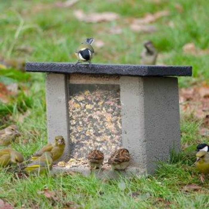 WoodStone Ground Feeder