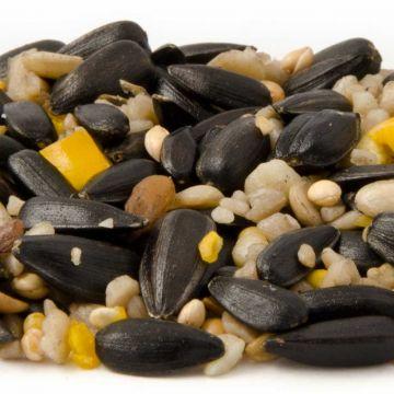 Hi Energy Seed