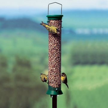 Medium Green Challenger Peanut Feeder