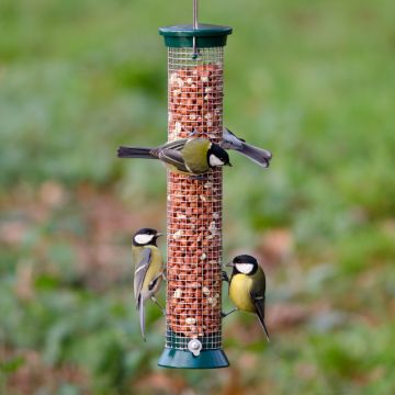 Medium Green Defender Peanut Feeder