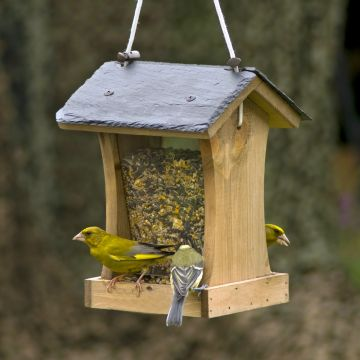 Mercury Slate Seed Feeder