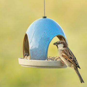 Vierno Tavern Seed Feeder Blue