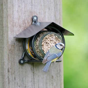 Wicklow Peanut Butter Feeder