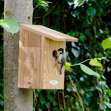 Dura Green Edmonton 34mm Nest Box