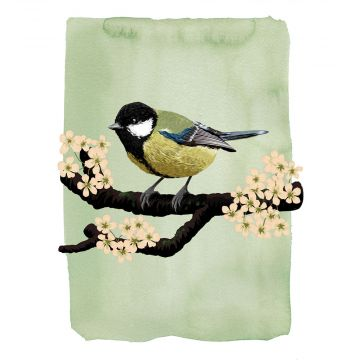 Myrte Great Tit Card