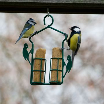 Suet Log & Feeder Pack