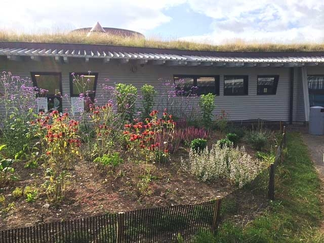 Butterfly Garden at Shropshire Hills Discovery Centre