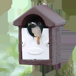 WoodStone® Nest Boxes