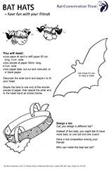 Bat Hat
