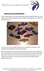 Make your own Needle Felt Bat
