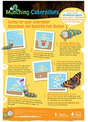 Caterpillar Caring for your Caterpillar
